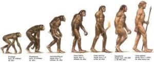 evolución del hombre 2