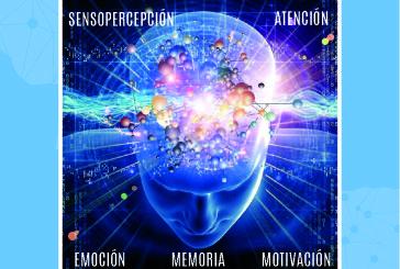 Neuroeducación – Curso 171811GE073-Materiales